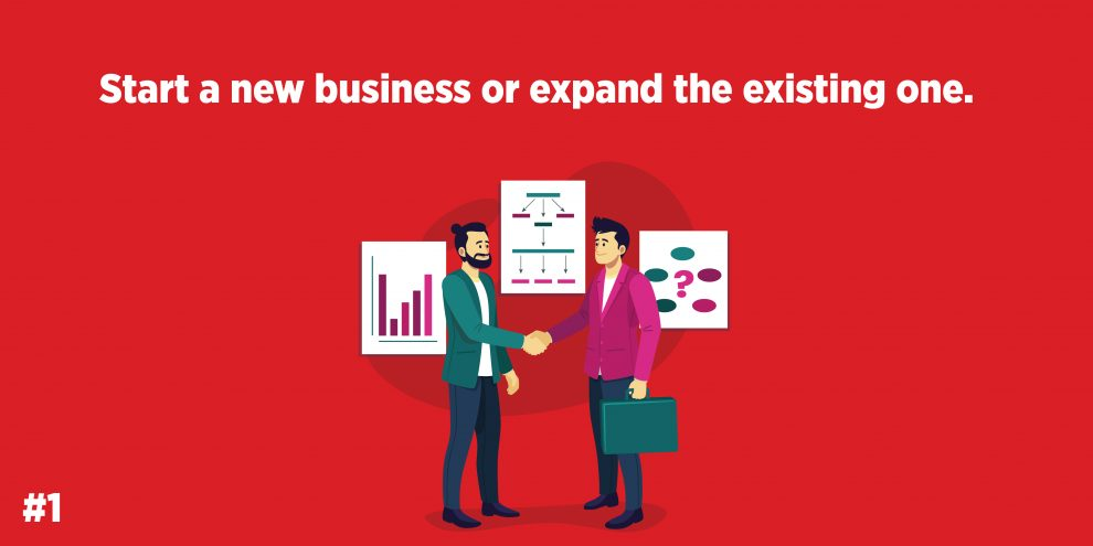 Start a new business or expand the existing one.